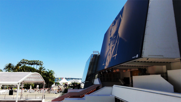 cannes-2014-fin
